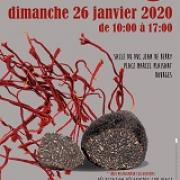 Bourges 2020 icone